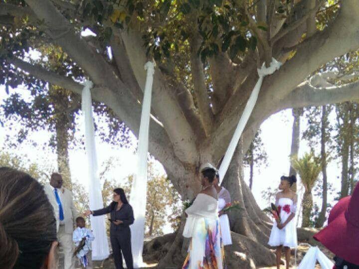 Tmx 1427895220125 Donya 2 Biloxi wedding officiant