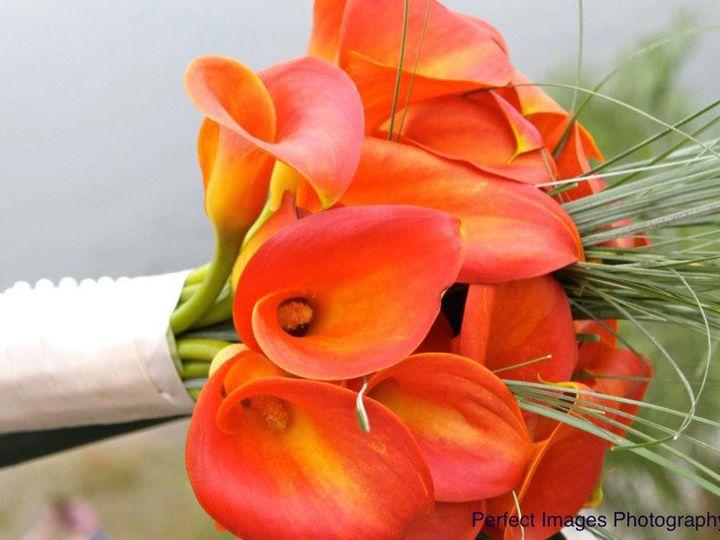 Tmx 1427895247828 Fall Callas Biloxi wedding officiant