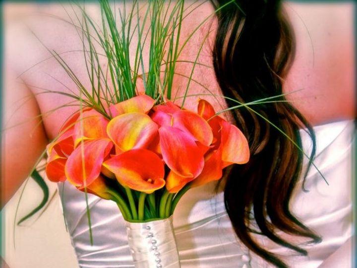 Tmx 1484261478043 099 Biloxi wedding officiant