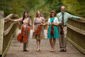 Triangle String Quartet