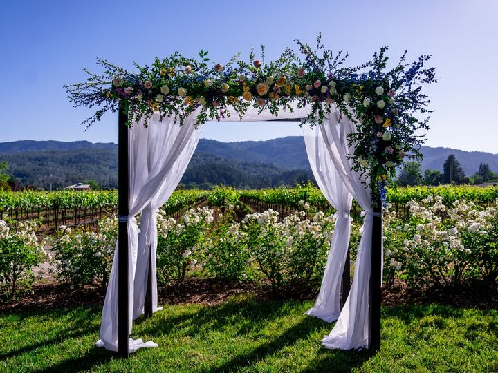 Tmx 20190511 173135 A9209934a 51 961816 1564465764 Napa, CA wedding planner