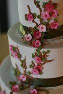 Tmx 1233073050609 Springblossom San Jose wedding cake