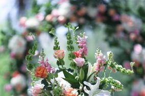 Beyond Floral