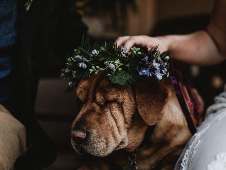 Tmx 584a7510 51 936816 161703940380977 Richland, WA wedding photography