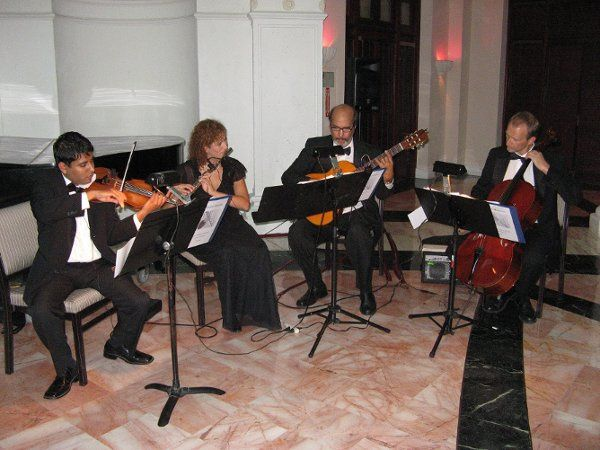 Guitar Quartet: Guitar, Flute, Violin, Cello.  Classical, Popular and Latin