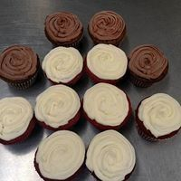 Red velvet or chocolate cupcakes