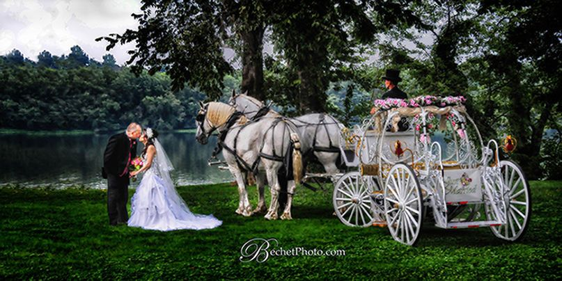 Add a touch of magic to your wedding with our stunning Cinderella carriage.