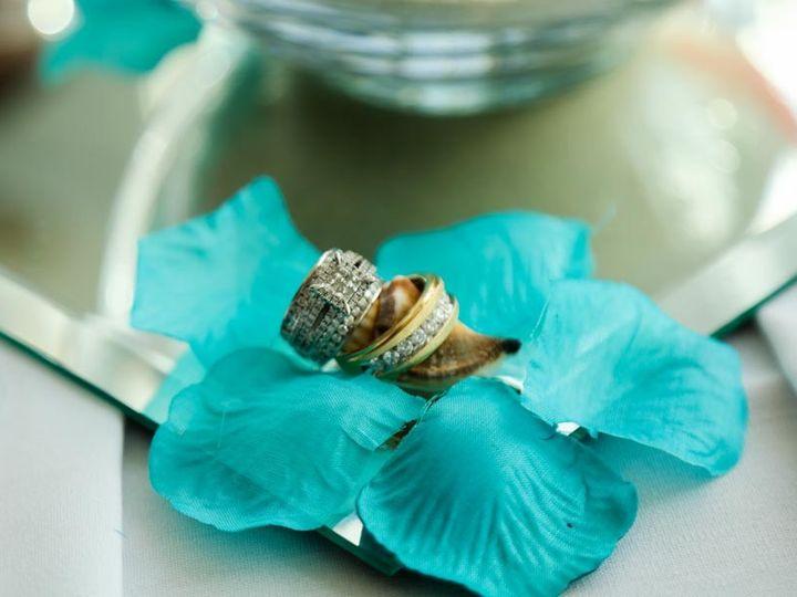 Tmx 1503156658287 0e4a5317 Tampa wedding photography