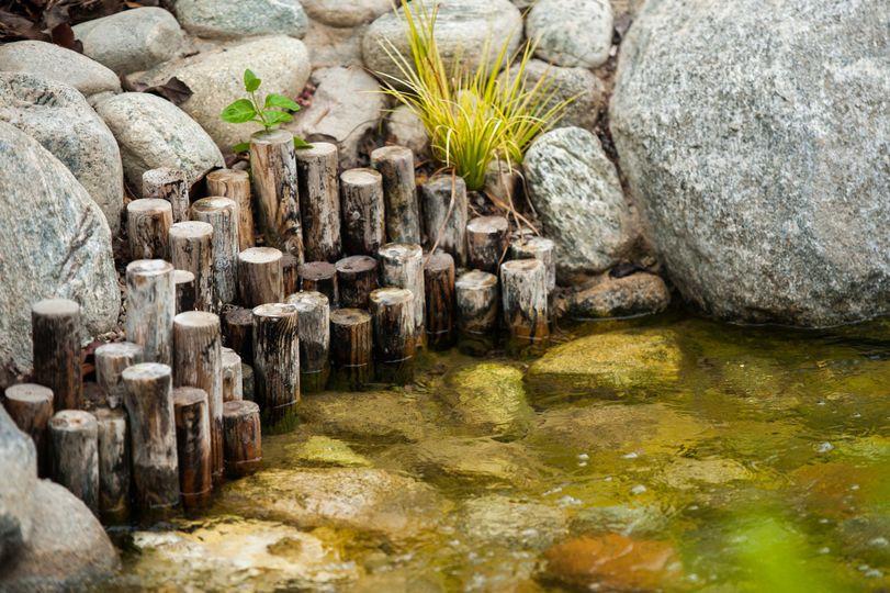 yasuhiro fujiki garden beauty shot april 21 20