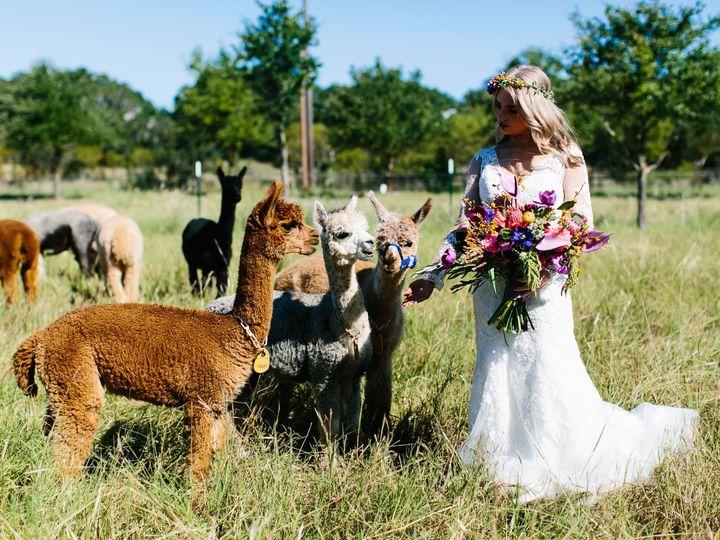 Tmx Al Gawlik 5 51 182026 Dripping Springs, Texas wedding venue