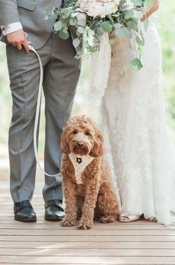 We love pups!