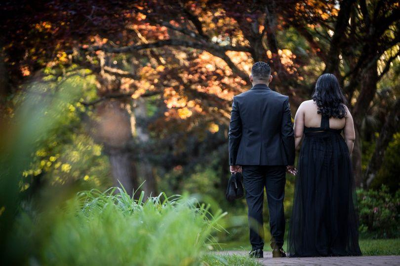 Walking through a sunlit grove