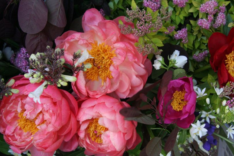 ky natural endeavors 16 reviews lexington ky merci bouquet 16 reviews