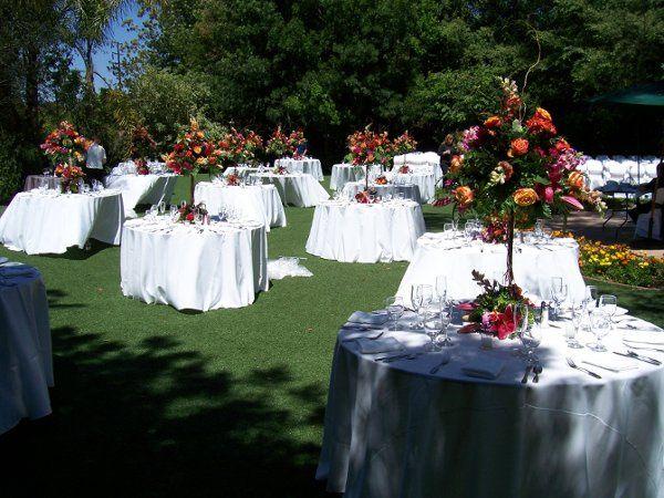 Hartley botanica reception