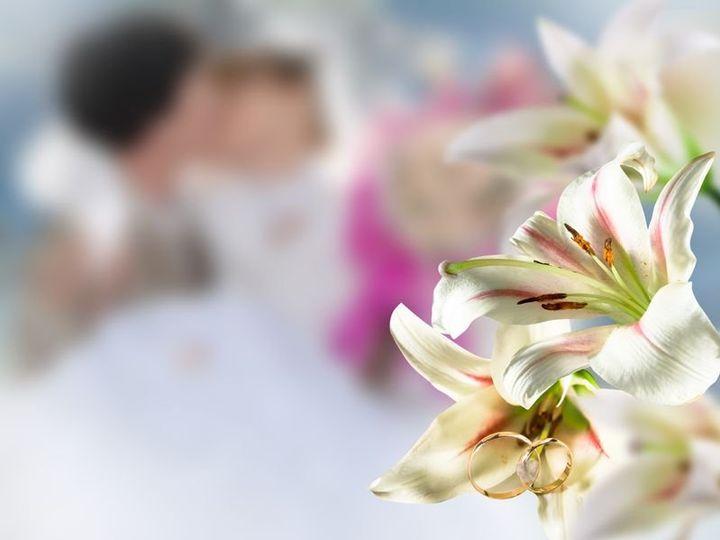 Tmx 1361829387674 9097547m North Wales wedding florist