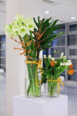 Tmx 1361829981109 15333994s North Wales wedding florist
