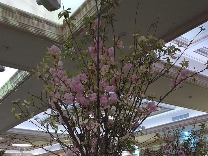 Tmx 1483894396627 High Centerpiece 2 Bergenfield wedding florist