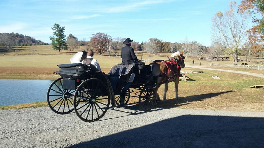 Bride and Groom rides away