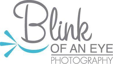blinklogo