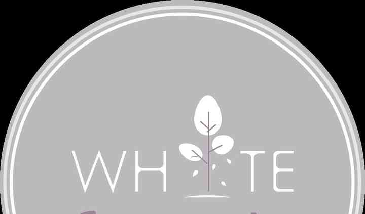 White Jacaranda