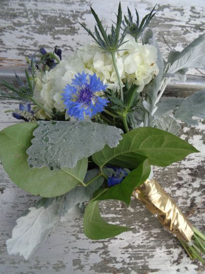 Bachelor Buttons and Hydrangea