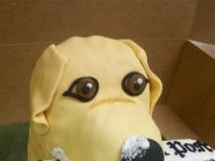 Tmx 1465511446106 Dog Wtih Newspaper Sykesville wedding cake