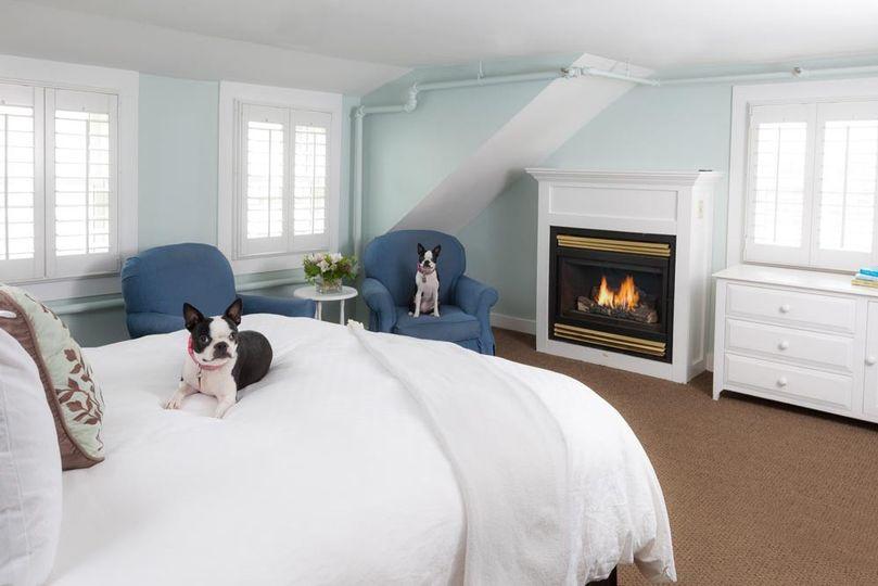 pet friendly suite edgartown