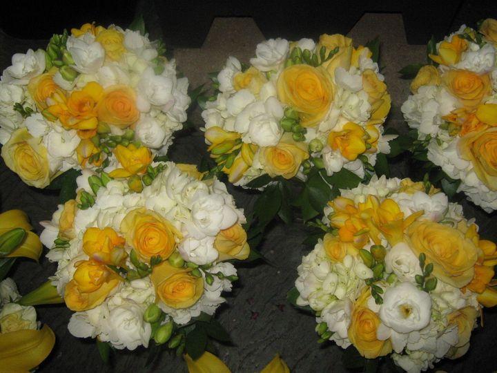 amanda coyle wedding 05 17 09 5 2 2009 12 10 25 am