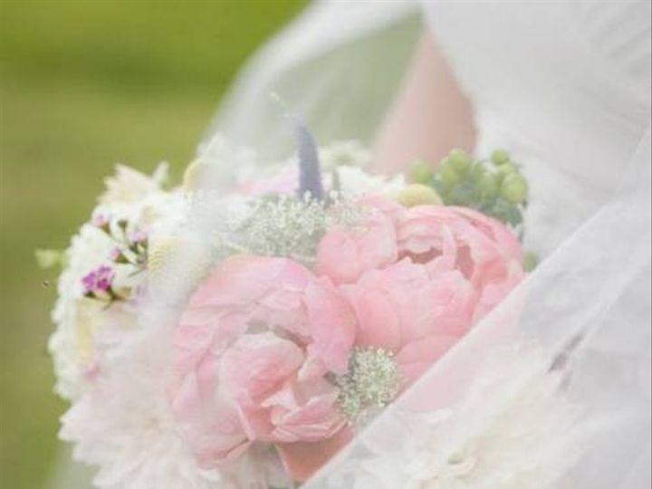 Tmx 1414770689284 Tumblrinlinemxcm3mwweb1qgayx7 Williamsburg wedding planner