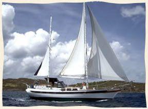 sail t181