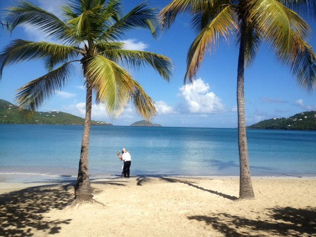 Wedding under the palm trees at world-famous Magens Beach, St. Thomas.