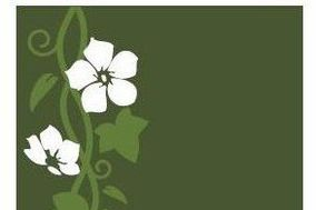 Ivy Lane Floral