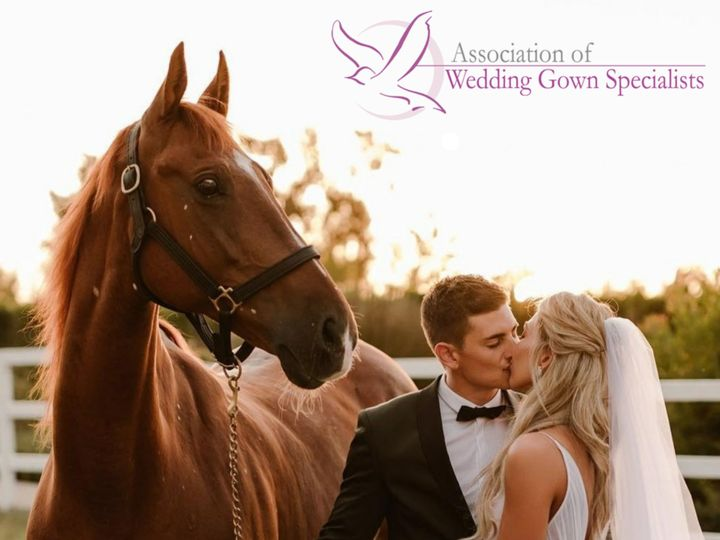 Tmx Wedding Gown Specialist Canvas 51 100036 158886586922646 Fort Worth wedding dress