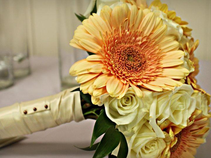 Tmx 1359728475092 IMG0838 Browns Mills wedding photography