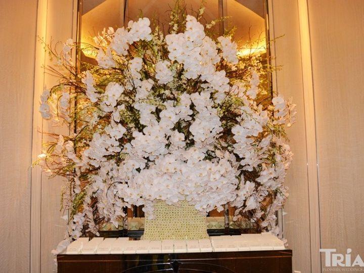 Tmx 1415896316933 Maritere Wedd31 Miami, FL wedding florist
