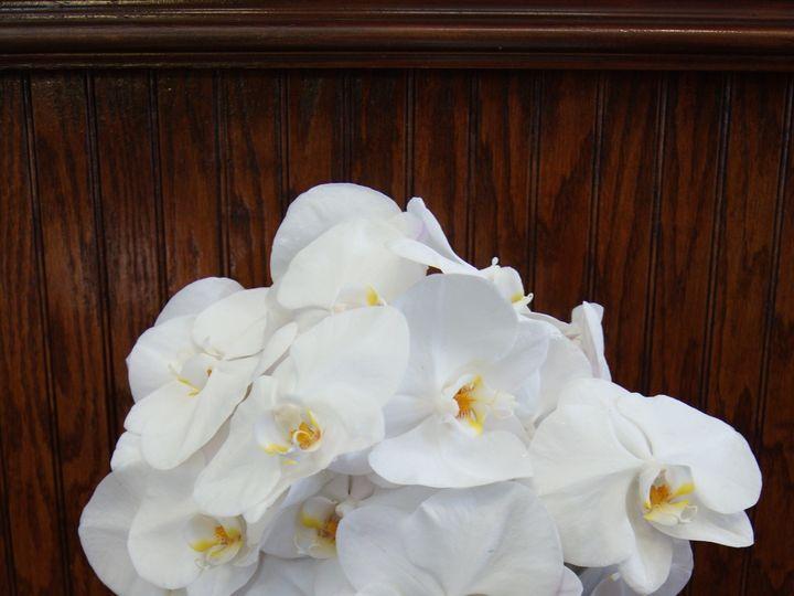 Tmx 1460055776429 Dsc08414 Miami, FL wedding florist