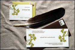 Tmx 1291939986624 Jasminesuitet Bellingham wedding invitation