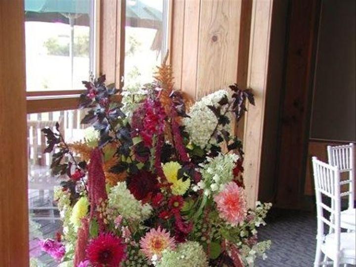 Tmx 1240399799671 Largeurn Auburn wedding florist