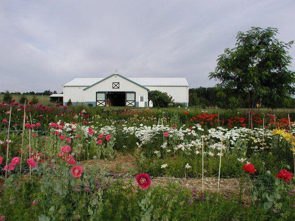 Tmx 1240447109375 Poppiesandhorsebarn Auburn wedding florist