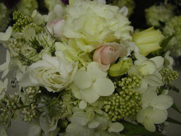 Tmx 1257715246121 P10100672 Auburn wedding florist
