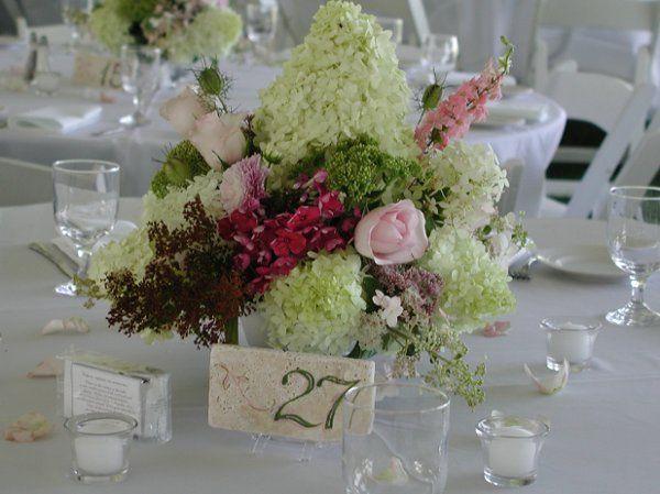 Tmx 1257715267324 P10100712 Auburn wedding florist