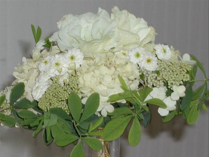 Tmx 1257715332902 P1010133 Auburn wedding florist