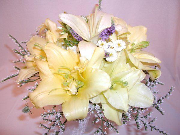 Tmx 1257715346152 P7120107 Auburn wedding florist