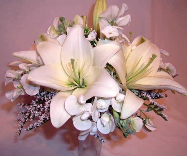 Tmx 1257715358527 P7120110 Auburn wedding florist
