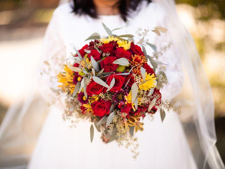 Tmx Daisha Portfolio 2 51 1002236 158222467648102 Durango, CO wedding photography