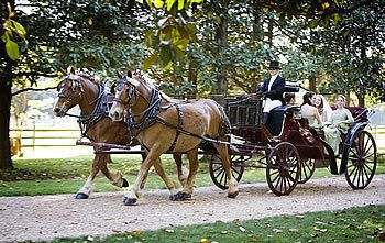 Harmon's Horse Drawn Carriages + White Mares for Baraats