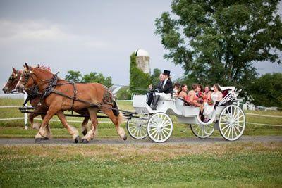 Tmx 1456936331858 Briarpatch1 Brandy Station wedding transportation