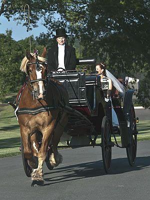 Tmx 1456936387126 Karen  Barney Brandy Station wedding transportation
