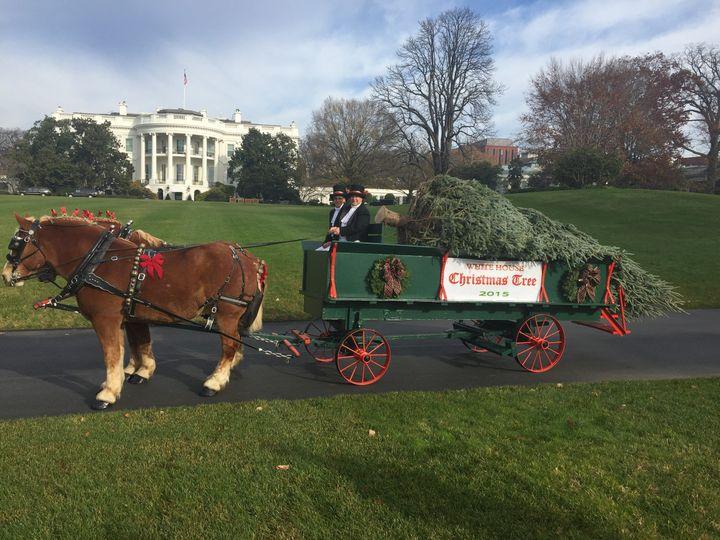 Tmx 1456936906553 White House 2015 Background Brandy Station wedding transportation