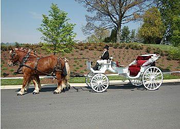 Tmx 1456936937536 Whitecarr2 Brandy Station wedding transportation